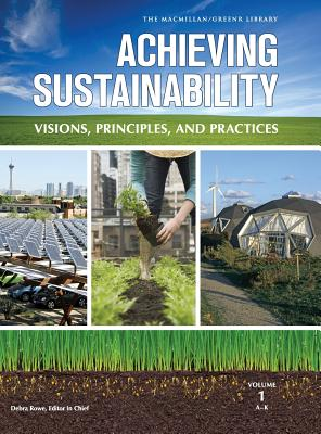 Image for Achieving Sustainability: Visions, Principles, and Practices