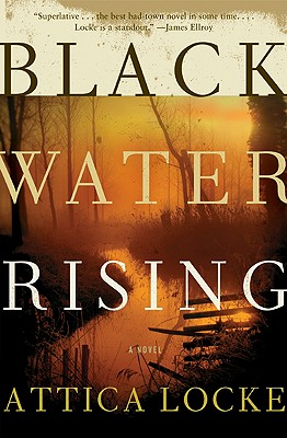 Image for Black Water Rising A Novel