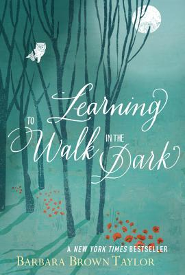 Image for Learning to Walk in the Dark