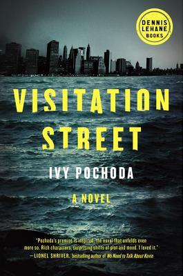 Image for Visitation Street A Novel