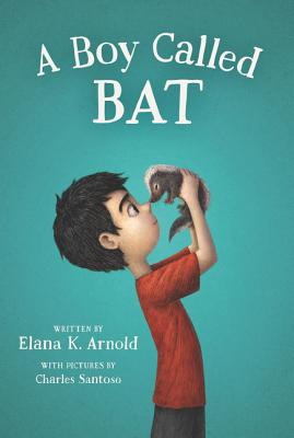 Image for Boy Called Bat, A