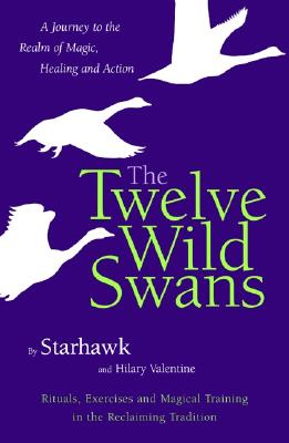 Image for The Twelve Wild Swans