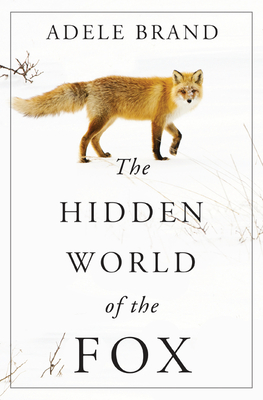 Image for The Hidden World of the Fox