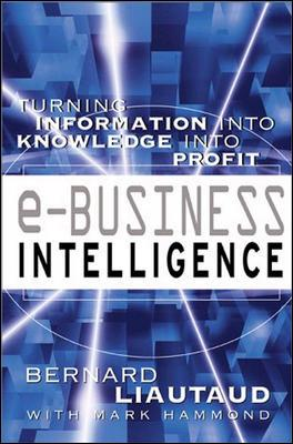 Image for e-Business Intelligence: Turning Information into Knowledge into Profit