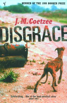 Image for Disgrace