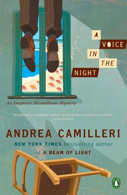 Image for Voice In The Night, A