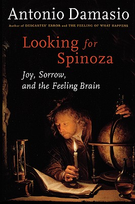 Image for Looking for Spinoza: Joy, Sorrow, and the Feeling Brain