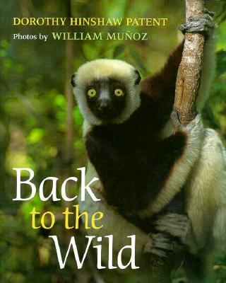 Image for Back to the Wild