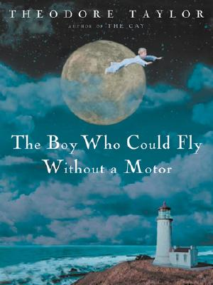Image for The Boy Who Could Fly Without a Motor