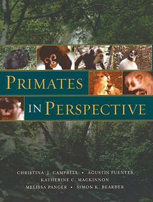 Image for Primates in Perspective