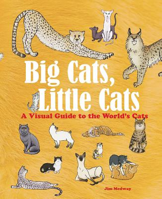 Image for Big Cats, Little Cats: A Visual Guide to the World's Cats (Big and Little)
