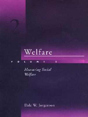 Image for Welfare, Vol. 2: Measuring Social Welfare