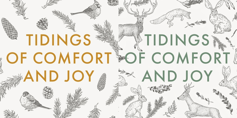 Image for Winter Wildlife 10-Pack Christmas Cards: Tidings of Comfort and Joy
