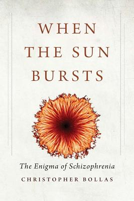 Image for When the Sun Bursts: The Enigma of Schizophrenia