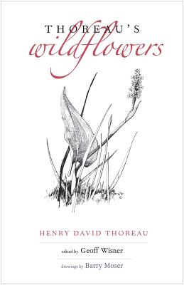 Thoreau's Wildflowers, Henry D. Thoreau