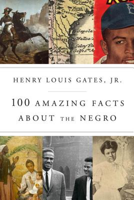 Image for 100 Amazing Facts About the Negro