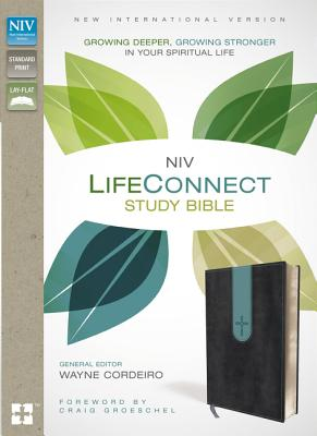 "Image for ""NIV, LifeConnect Study Bible, Imitation Leather, GrayBlue, Red Letter Edition: Growing Deeper, Gro"""