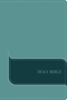 """Image for """"NIV, Understand the Faith Study Bible (Indexed, Turquoise Italian Duo-Tone)"""""""