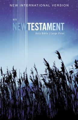 Image for NIV, Outreach New Testament, Large Print, Paperback
