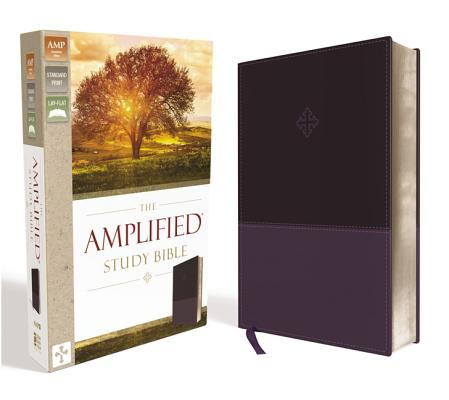 Image for Amplified Study Bible (Purple)