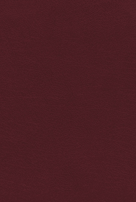 Image for NIV, KJV, NASB, Amplified, Parallel Bible, Bonded Leather, Burgundy: Four Bible Versions Together for Study and Comparison