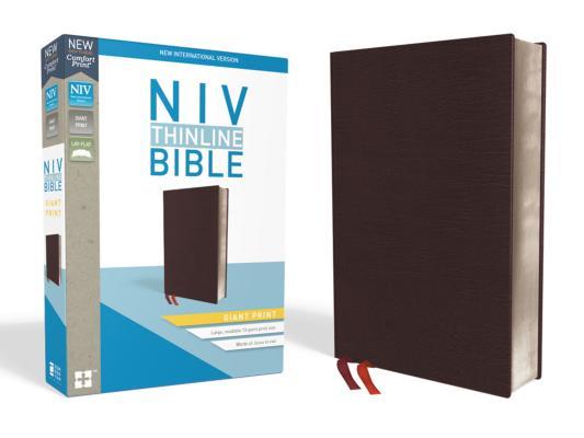 Image for NIV Thinline Bible GP Bnd Burgundy Ind RL