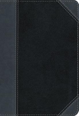 Image for NIV Thinline Bible LS Black/Gray RL