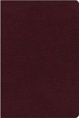 Image for NIV, Thinline Reference Bible, Bonded Leather, Burgundy, Red Letter Edition, Thumb Indexed, Comfort Print