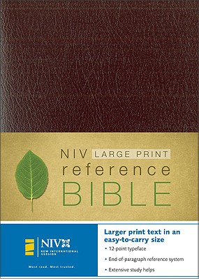 Image for Holy Bible (New International Version, Kivar, Burgundy)
