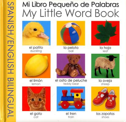 Image for My Little Word Book Bilingual: Spanish/English Bilingual (My Little Books) (Spanish Edition)
