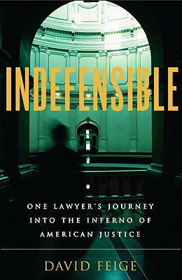 Image for Indefensible: One Lawyer's Journey into the Inferno of American Justice