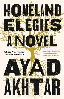 Image for Homeland Elegies: A Novel