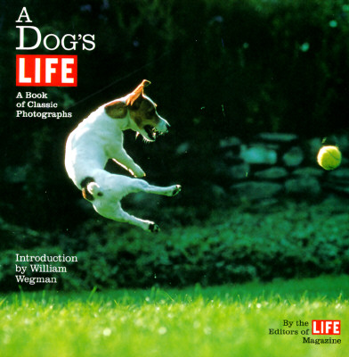 A Dog's Life: A Book of Classic Photographs, Life Magazine