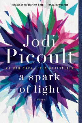 Image for A Spark of Light: A Novel
