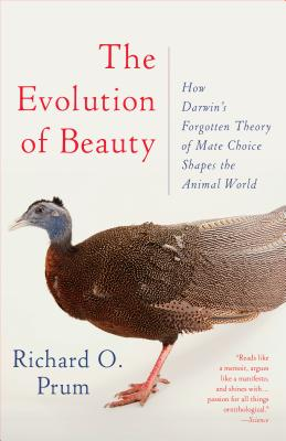 Image for The Evolution of Beauty: How Darwin's Forgotten Theory of Mate Choice Shapes the Animal World - and Us