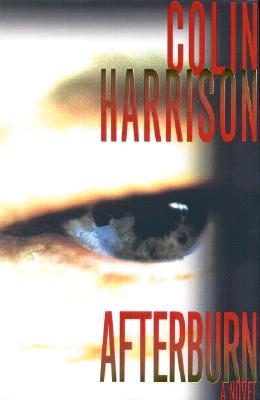 Image for Afterburn A Novel