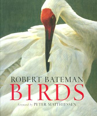 Birds, Bateman, Robert