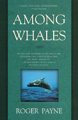 Image for Among Whales