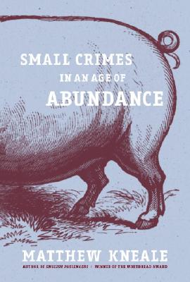 Image for Small Crimes in an Age of Abundance
