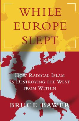 Image for While Europe Slept : The Coming Struggle for the Soul of Europe