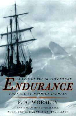Image for Endurance