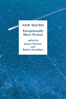 Image for New Micro: Exceptionally Short Fiction