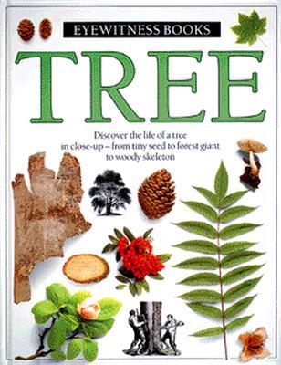 Image for Tree (Eyewitness)