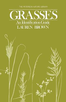 Image for Grasses: An Identification Guide (Peterson Nature Series), 1st Edition