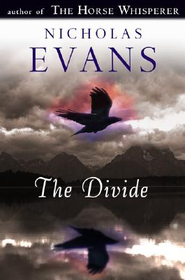 Image for The Divide