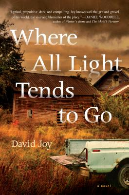 Image for Where the Light Tends to Go A Novel
