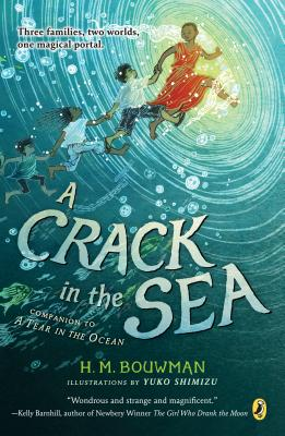 Image for A Crack in the Sea