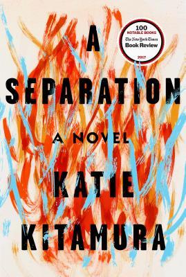 Image for A Separation: A Novel