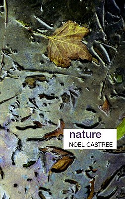 Nature (Key Ideas in Geography), Castree, Noel