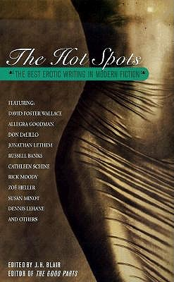 Image for The Hot Spots: the Best Erotic Writing in Modern Fiction